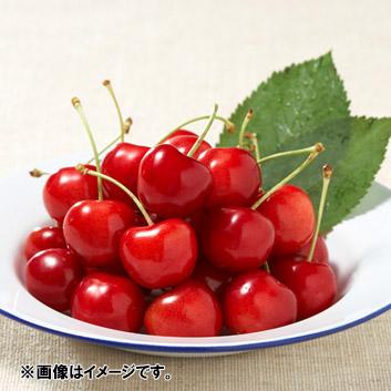 <山形県産>天香園グループ 紅秀峰 秀2L玉(バラ詰)1kg
