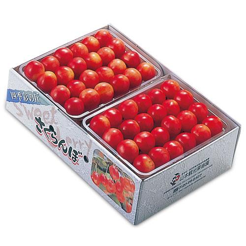 <北海道産>山本果樹園 南陽  秀3L玉(鏡詰め)1kg