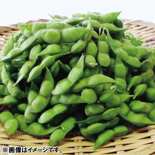 <山形県産>冨樫(とがし)さんちの白山だだちゃ豆1.5kg