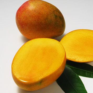 【お買い得!!】<宮崎県産>完熟アップルマンゴーB品(2玉)