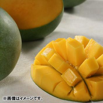 <沖縄県産>キーツマンゴー(1玉)