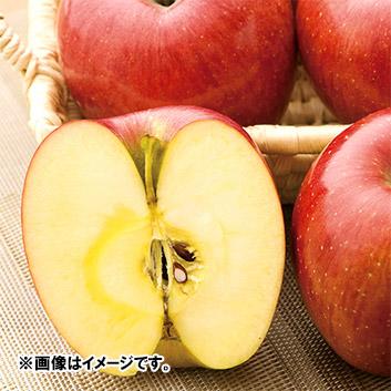 <長野県産> あいかの香り3kg(7~9玉)