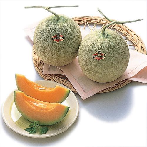 <北海道産>夕張メロン(優品)計2.6kg 2玉
