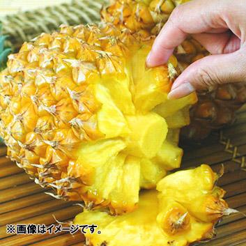 <沖縄県産>スナックパイン (2~4玉)2.8kg