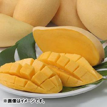 <タイ産>エア便マンゴー(6玉前後)2.5kg