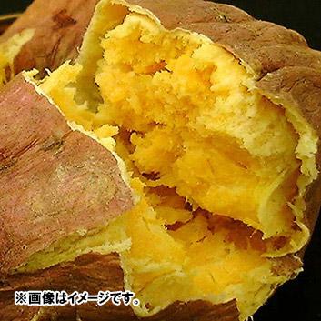 <鹿児島県産>向井さんの安納芋【無選別】5kg