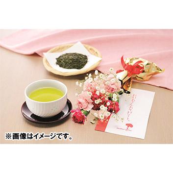 【母の日】新茶と生花カーネーションセット ※送料込