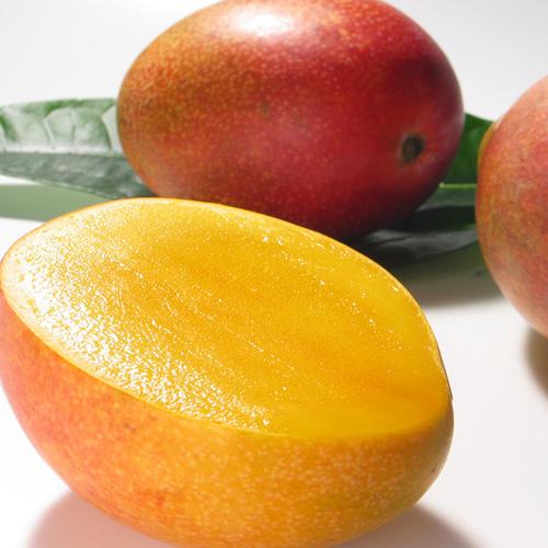 <沖縄県産>アップルマンゴー 秀優混合(2~3玉)1kg