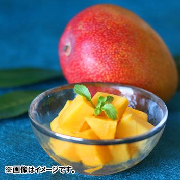 <ベジターレ>限定宮崎県産完熟マンゴー 2玉