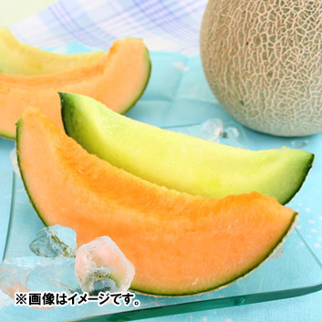 生産者限定 エコファーマー 山形県産庄内メロン(赤肉・青肉メロン)