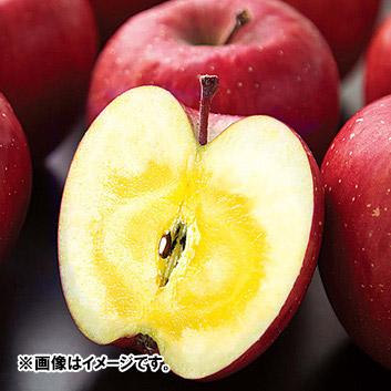 <青森県>ナカムラ 蜜入り 「サンふじりんご」3kg(9~10玉)