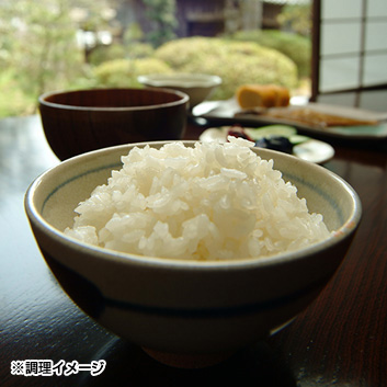 <兵庫県但馬産>特別栽培米こしひかりコウノトリ育むお米