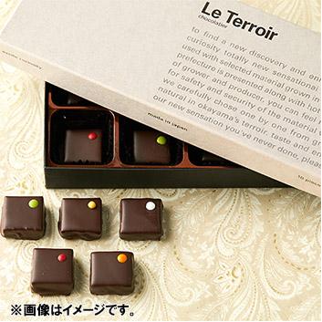 Le Terroire ショコラ 10個