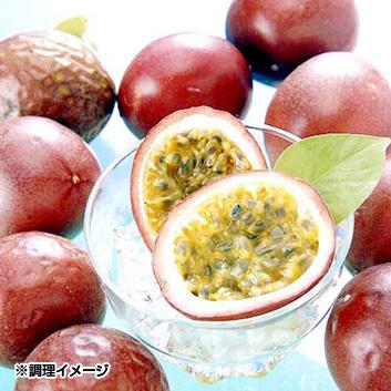 沖縄県産パッションフルーツ8~12玉