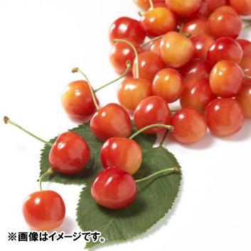 <山形県産>佐藤錦 優・秀混L玉(バラ詰)1kg