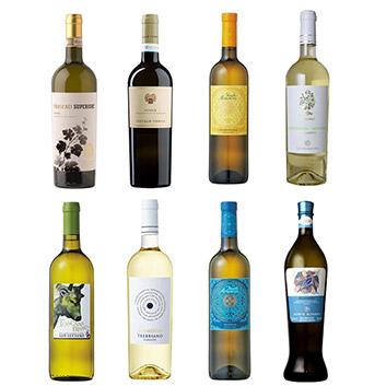 【送料無料】本間チョースケセレクト イタリア飲み尽くし白ワイン8本セット