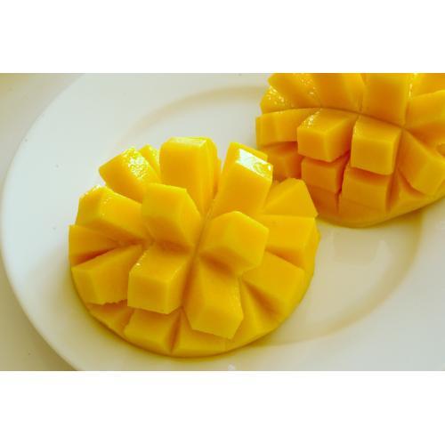 沖縄県産訳あり家庭用マンゴー2kg