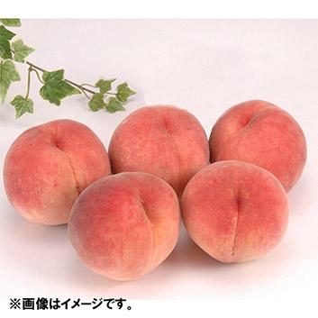 福島・長野・山形産 旬の桃 6個(1.4kg)
