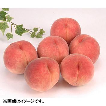 福島・長野・山形産 旬の桃 8~10個(計2.2kg)