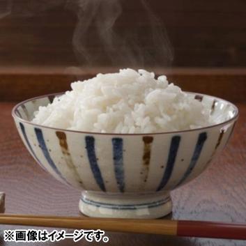 【新米】北海道富良野産ゆめぴりか 10kg