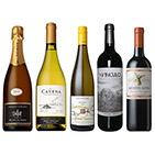 【送料無料】A-styleソムリエが選んだ、冬に飲みたいふくよかでリッチな味わいのワイン5本セット