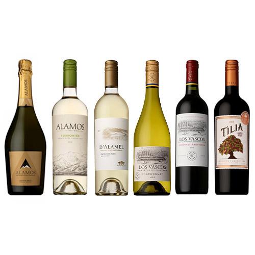 【送料無料】南米ワイン贅沢堪能6本セット