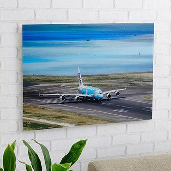 <ANAオリジナル>LUKE H.OZAWA撮影アクリルフォトパネル A380 FLYING HONU エメラルドグリーン L