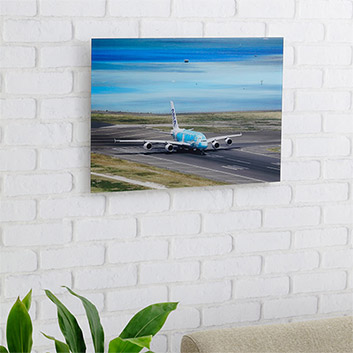 <ANAオリジナル>LUKE H.OZAWA撮影アクリルフォトパネル A380 FLYING HONU エメラルドグリーン M