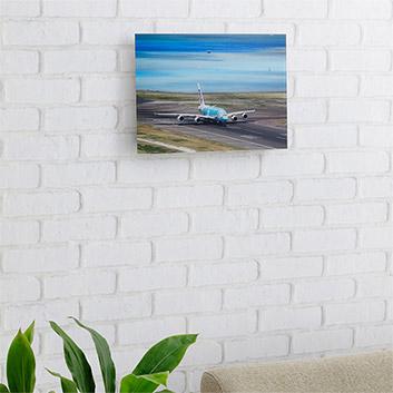 <ANAオリジナル>LUKE H.OZAWA撮影アクリルフォトパネル A380 FLYING HONU エメラルドグリーン S