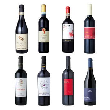 【送料無料】本間チョースケセレクト!バルバレスコ入り!イタリア土着品種赤ワイン8本セット