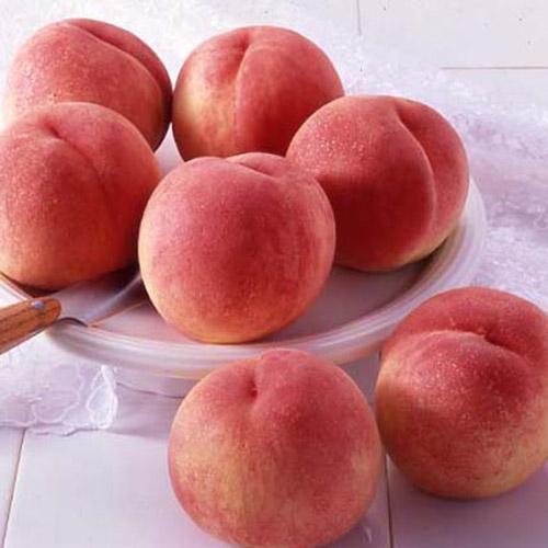 和歌山県産 桃 1.3kg(5~7玉)