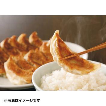 <信念フーズ>肉餃子・野菜餃子詰合せ(48個入り)