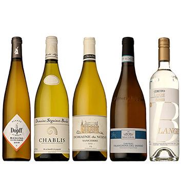 【スペシャルセレクション】夏の食卓にぴったり!冷やして美味しい白ワイン5本セット