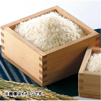 【新米】新潟県産 こしひかり 9kg(5kg×1袋、2kg×2袋)
