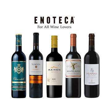 【送料無料】おすすめ赤ワイン5本セット(エノテカ)