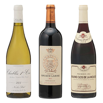 ★福袋限定★ ファーストクラス採用のフランス産ワイン3本セット
