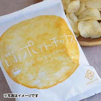 <Ante>奥能登しおポテトチップス(10袋入)