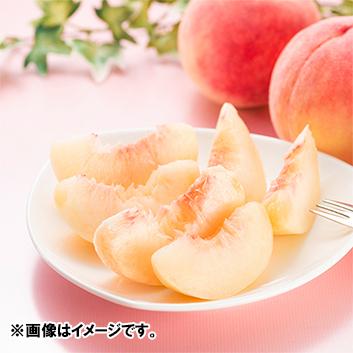福島県産白桃あかつき2.5kg(7~9玉)