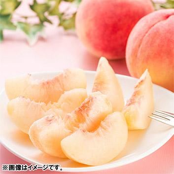 福島県産白桃まどか2.5kg(7~9玉)