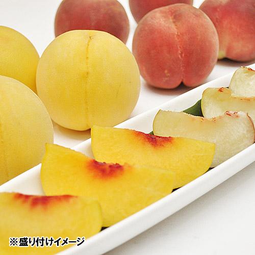 <福島県産>白桃と黄桃の食べくらべ1.5kg 6玉