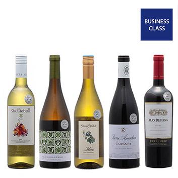 【送料無料】2019年度機内ワイン ビジネスクラス赤白ミックス5本セット