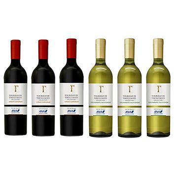 【送料無料】2019年度機内ワイン エコノミークラス赤白ワイン6本セット