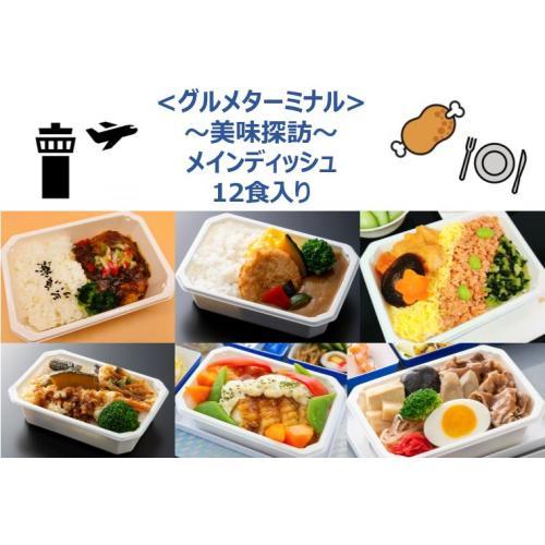 【ANA's Sky Kitchen】おうちで旅気分!!ANA国際線エコノミークラス機内食メインデイッシュ グルメターミナル ~美味探訪~ セット 12個入り