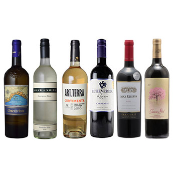 【送料無料】<A-styleソムリエ厳選>ボリューム感、果実味しっかりのワイン6本セット