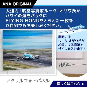 <ANAオリジナル>LUKE H.OZAWA撮影アクリルフォトパネル