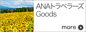 ANA Travelers Goods