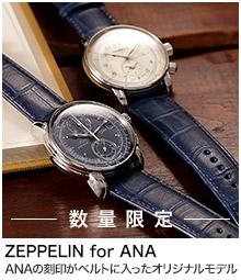 ZEPPELIN for ANA