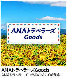 ANA Travelers Goods