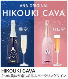 ANAオリジナル HIKOUKI CAVA(飛行機カヴァ)特集