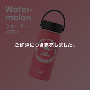 Water-melon ウォーターメロン ご好評につき完売しました。